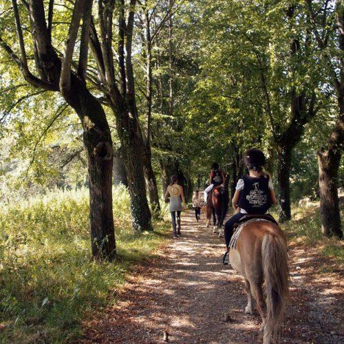 04_1_paseos_rutas_caballo_03