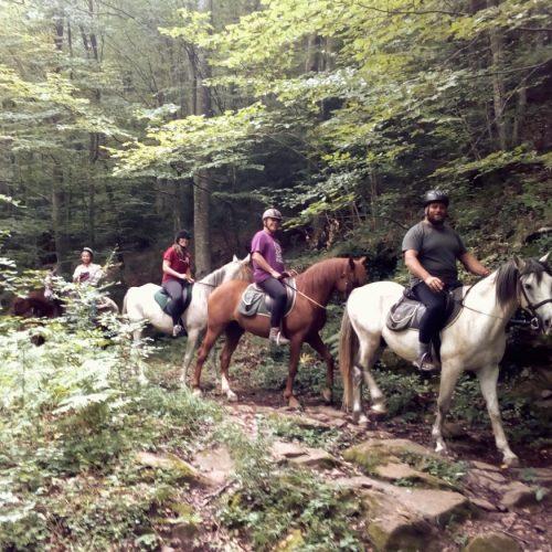 04_1_paseos_rutas_caballo_04