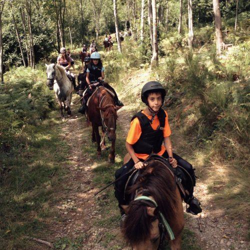 04_1_paseos_rutas_caballo_06
