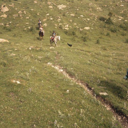 Colonias hipicas la vall de camprodon