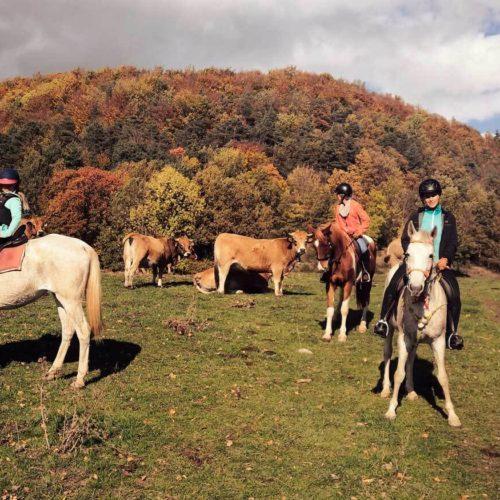 excursion-a-caballo_02