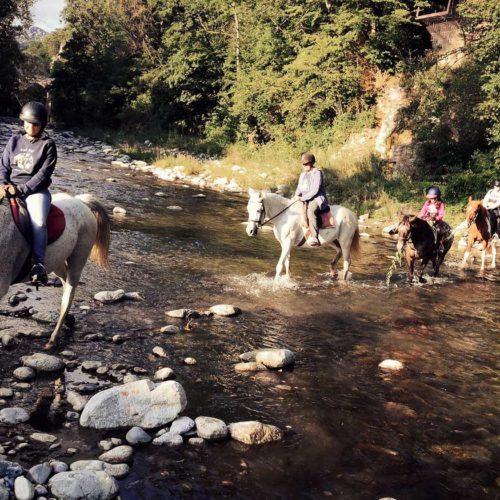 paseos_a_caballo_01