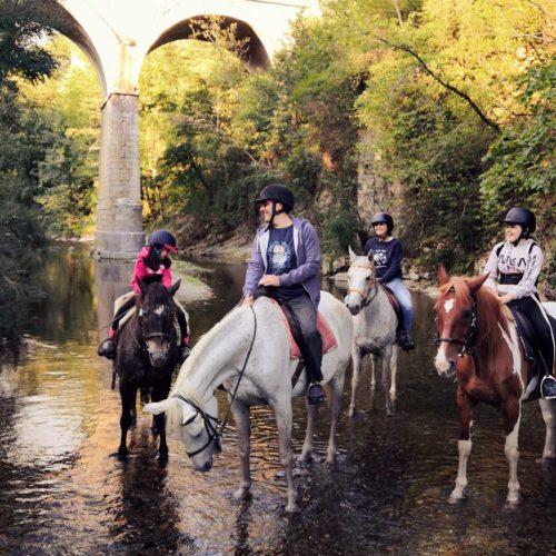 paseos_a_caballo_02